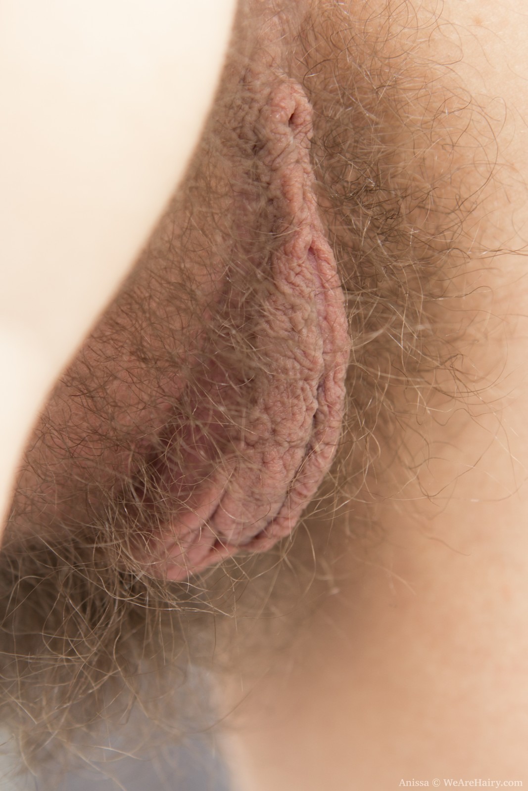 Hairy pussy pics from behind